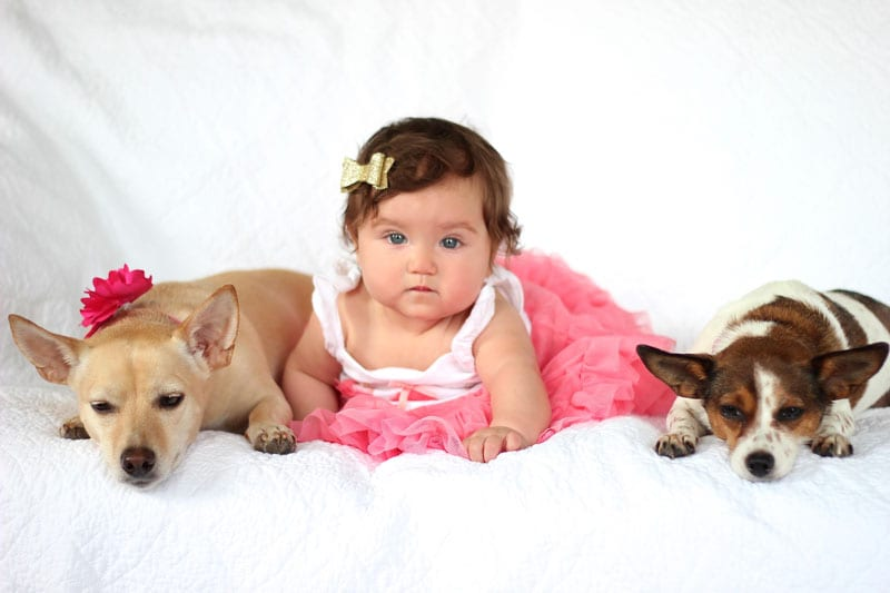 All of Margaret Moseley Ussery's babies! From left to right: Kloe, Everly Mae and Koqui.