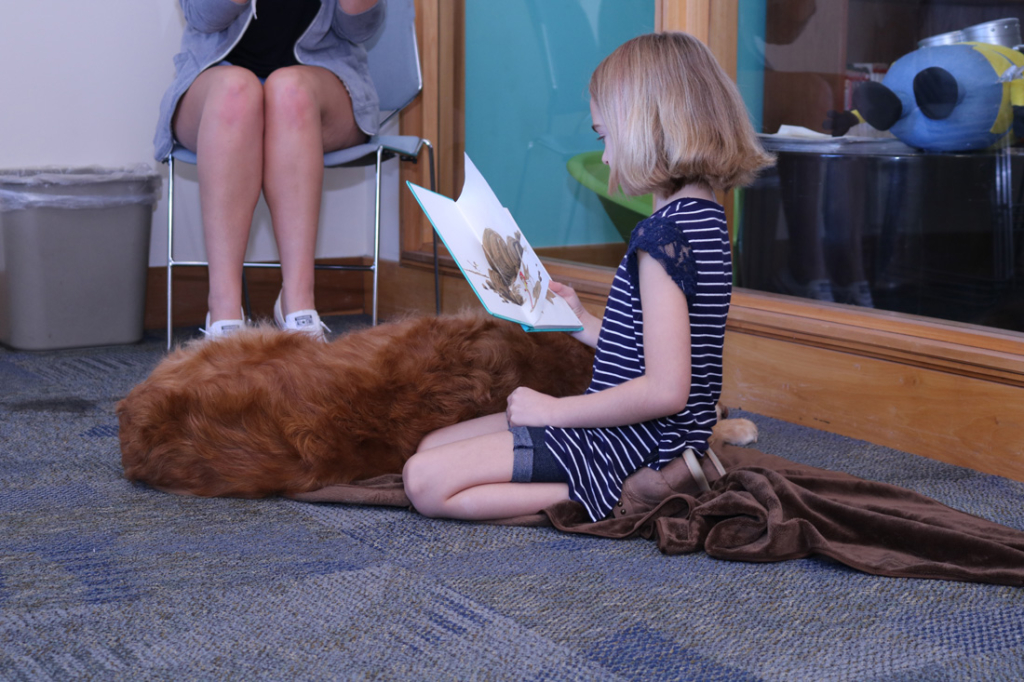 Reading Paws helps youngsters gain self-assurance by reading aloud to skilled therapy dogs.