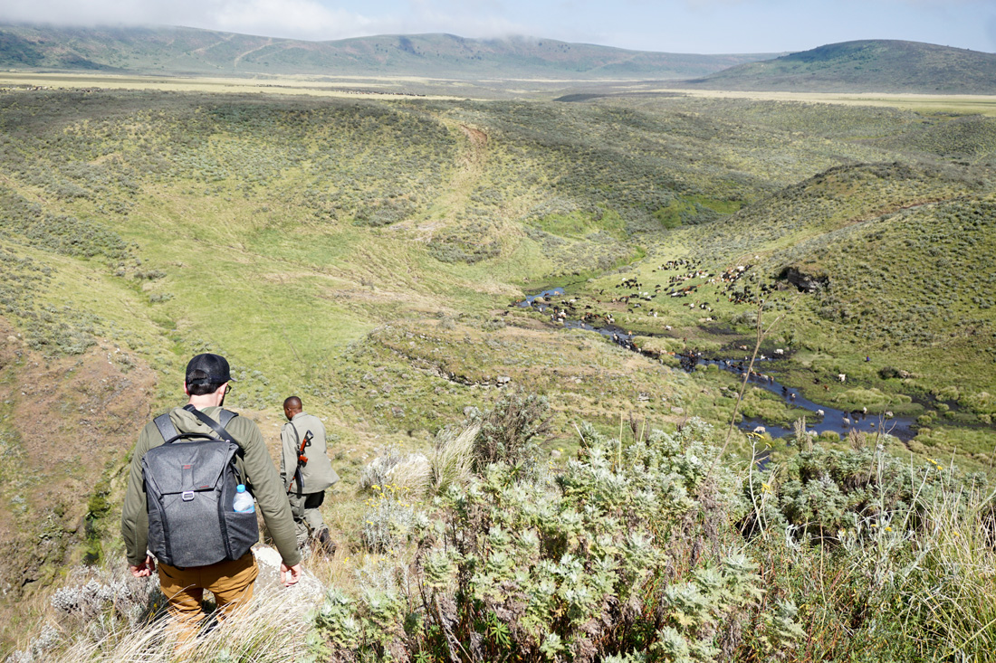 A park ranger leads a hike into Olmoti Crater in the Ngorongoro Conservation Area.
