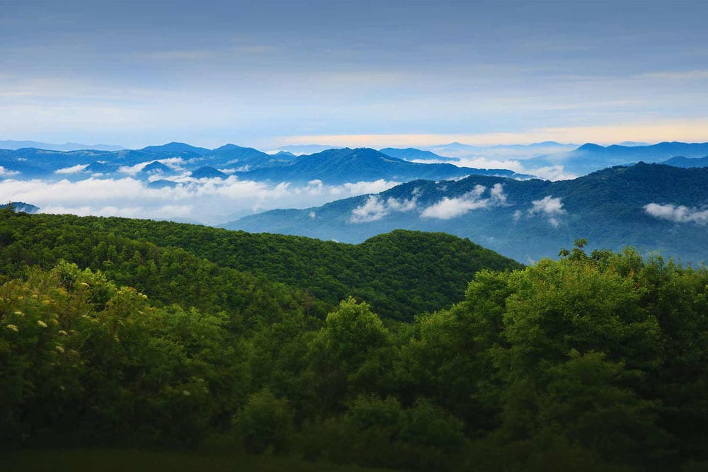 The rolling hills of the Smoky Mountains provide the backdrop for a range of outdoor activities, including hiking, horseback riding and kicking back to breathe in the fragrant air.