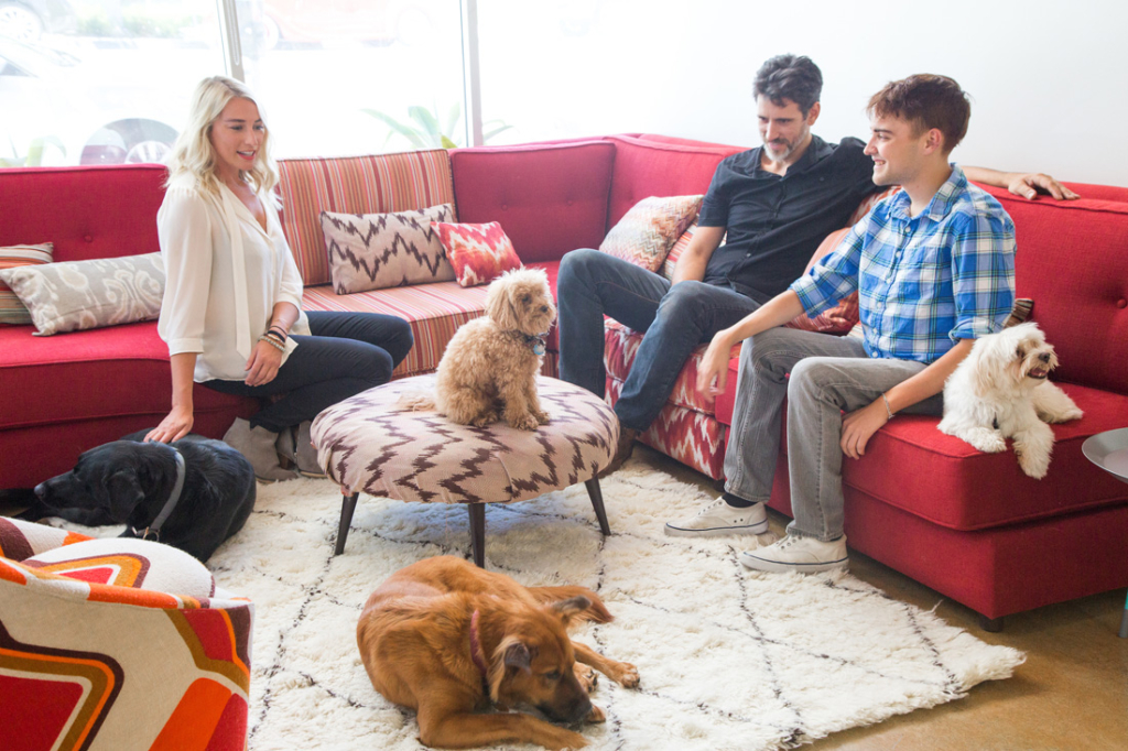 DogVacay began when its two founders were sick of leaving their dog at the kennel. Today, dog sitters open up their homes to local pets through their online service.