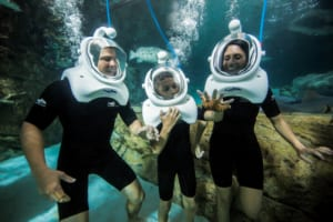 With the aid of special helmets, Discovery Cove guests can walk on the bottom of a man-made reef.