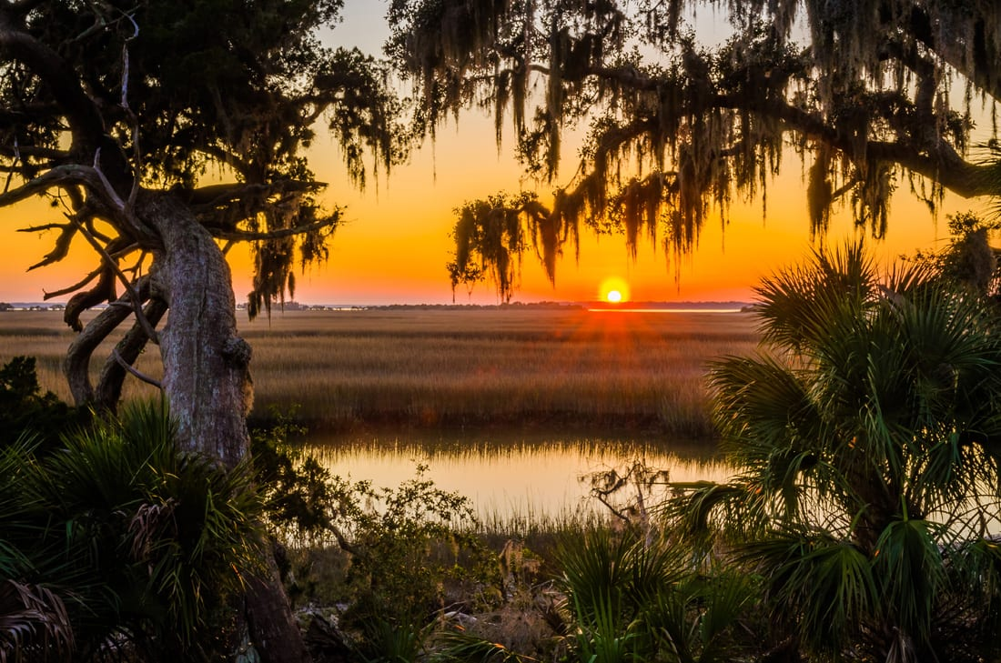 A place of astounding beauty, Cumberland has beaches, dunes, forests, marshes, estuaries and wetlands.